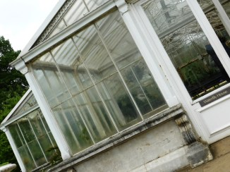 V - Victorian Waterlily House (2)