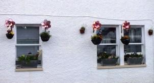 Unusual flower baskets