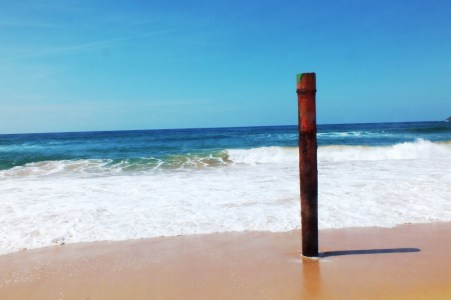 Dee Why post2