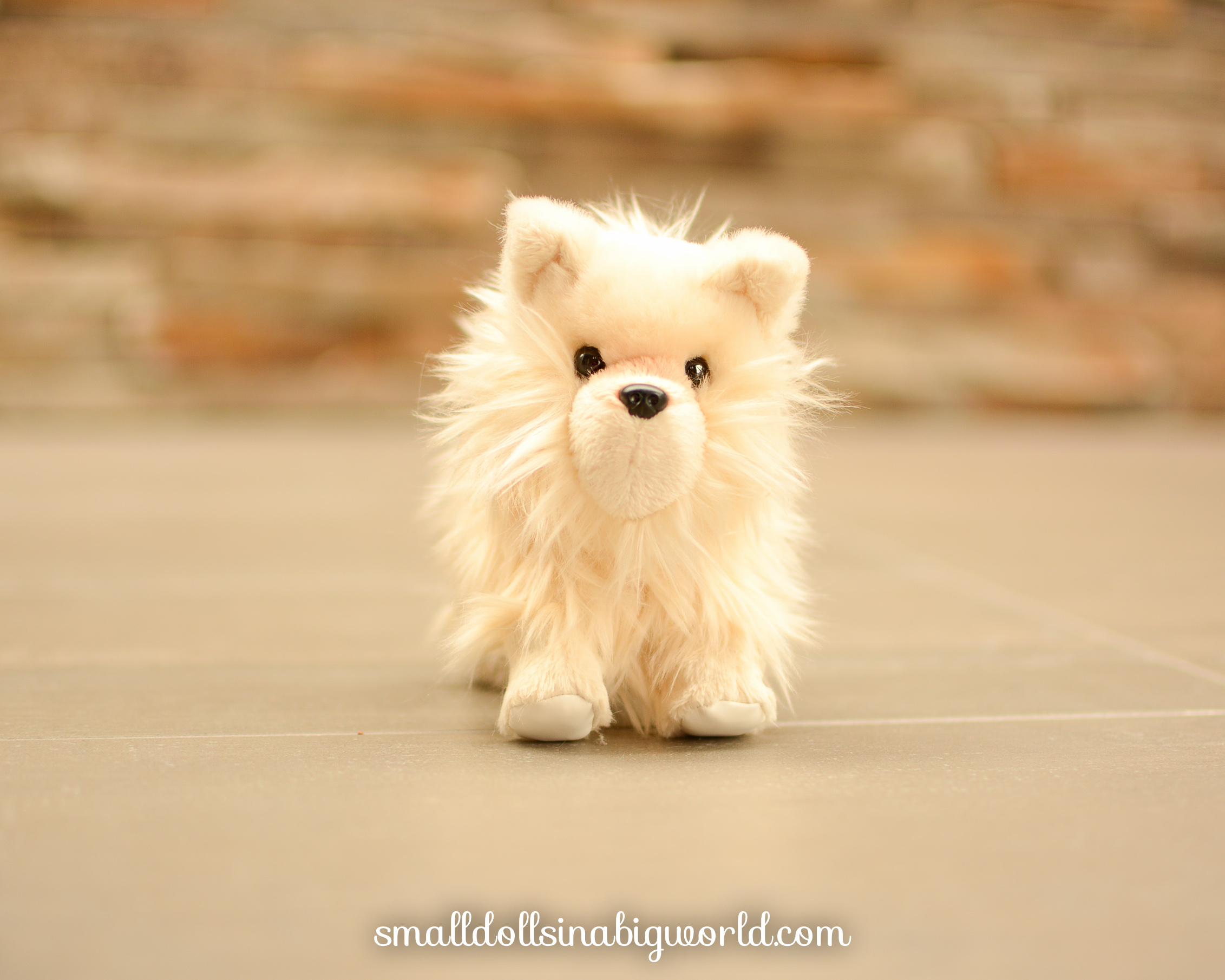 review pomeranian puppy small dolls in a big world