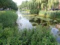 Nature-friendly embankments of the Bergsingel