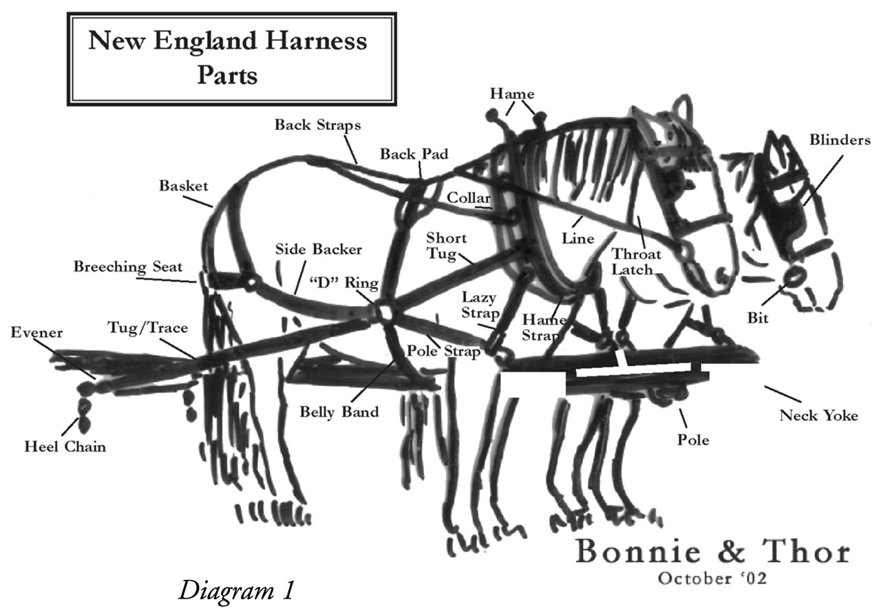 Horse Wagon Harness