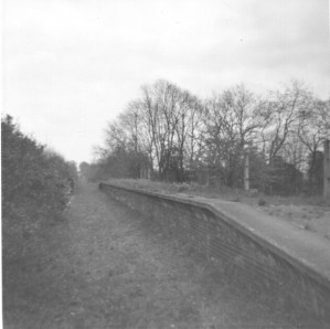 Hill End 12 1968 track lifted 1967