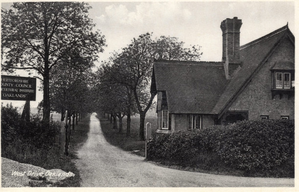 Smallford Postcard - showing East Drive and Lodge