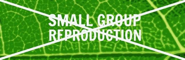 No Small Group Reproduction