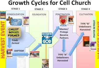 Growth Cycles