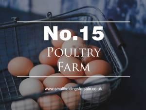 Poultry Farm Smallholding