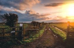 direct farm marketing