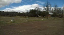 Prude Guest Ranch RV sites
