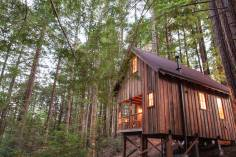 Owl Tree Cabin, a tiny cabin that feels like a treehouse. It has a compact kitchen and bathroom on the 225 sq ft main level plus a loft bedroom. | www.facebook.com/SmallHouseBliss