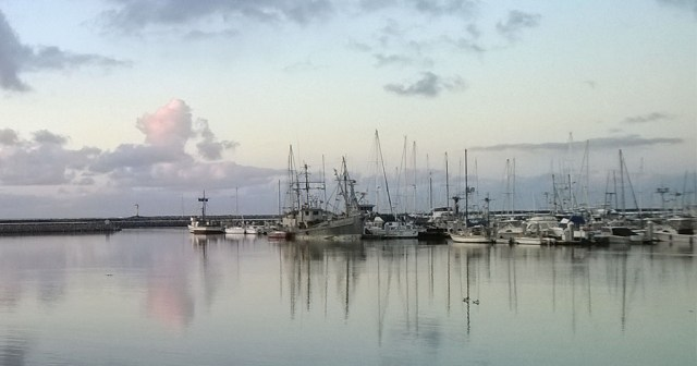 Quiet Morning Half Moon Bay Harbor CA