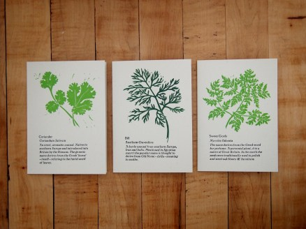 Herb Garden - linocuts by Rob Chapman