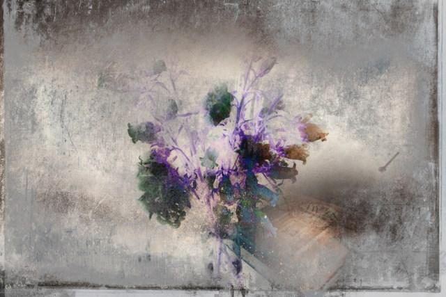 Flowers & Drawings v.2 by Alexander Miroshnikov