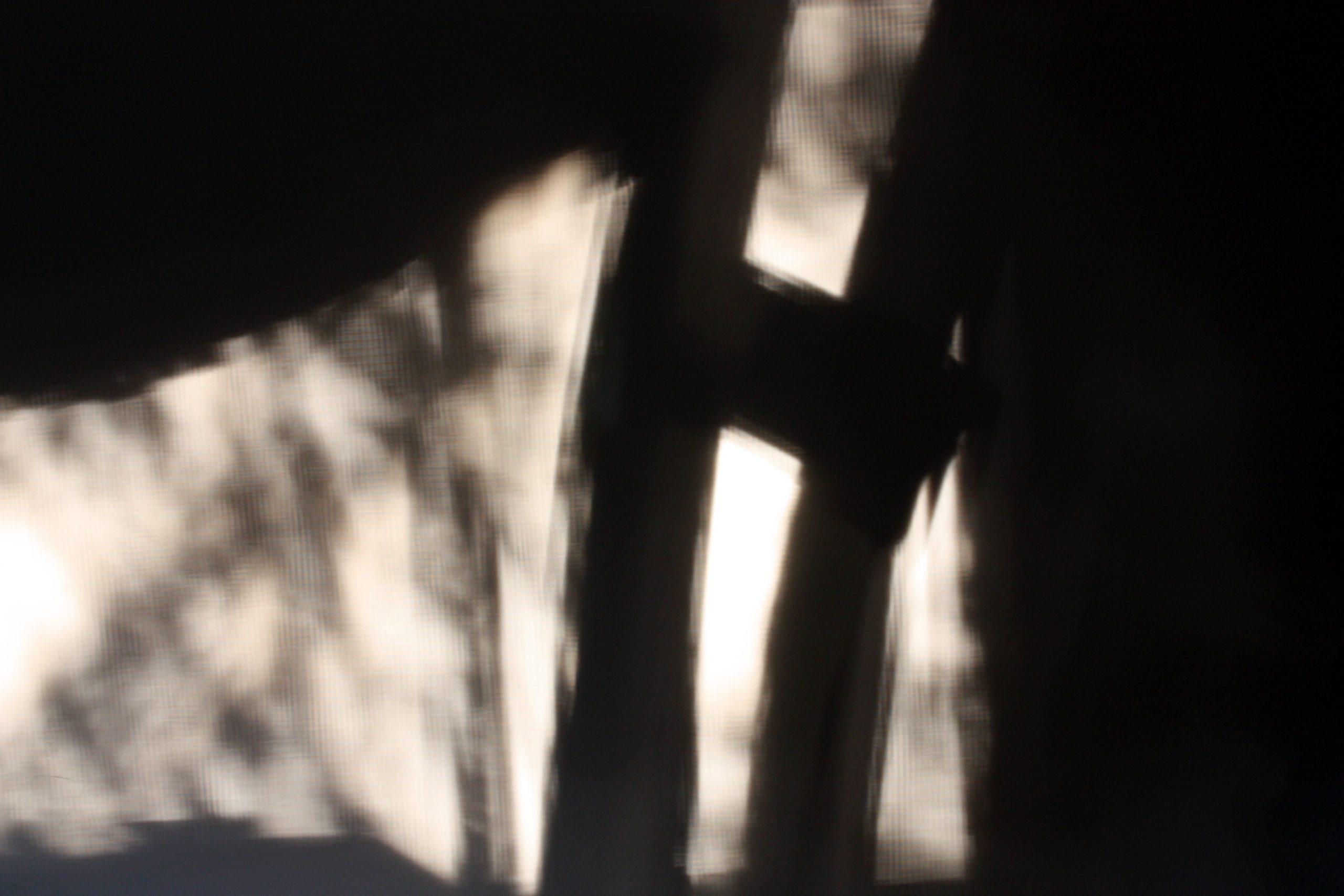 Evening Shadows by F.R. Dane