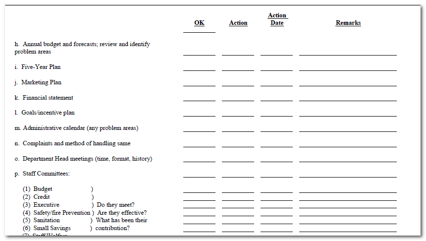 Word Action Plan Format