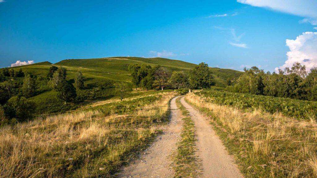 Sentiero monte Falò prati verdi