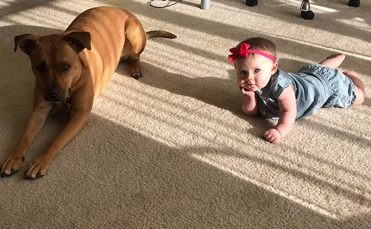 baby-with-dog