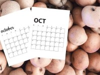 Free October 2020 Calendar Printables | Sunday And Monday Start