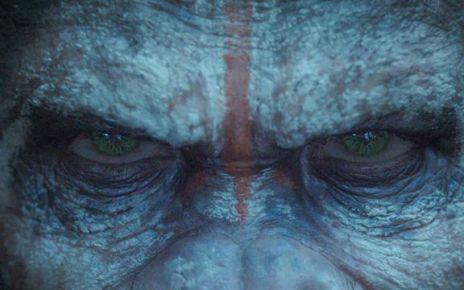 30 juillet 2014 - Planète des Singes, l'affrontement : Bromance