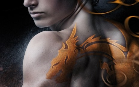 bit-lit - Dragonfury, une nouvelle saga bit-lit aux éditions Milady