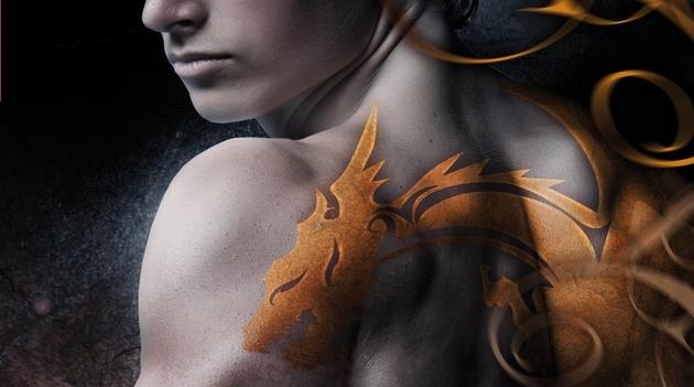 bit-lit - Dragonfury, une nouvelle saga bit-lit aux éditions Milady Dragonfury Furie de Flamme couv