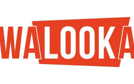 offre légale - Walooka : les séries que vous ne connaissez pas en streaming légal