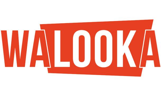 streaming - Walooka : les séries que vous ne connaissez pas en streaming légal