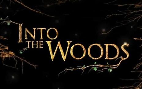 disney - Into The Woods : promenons-nous (longtemps) dans les bois into t10