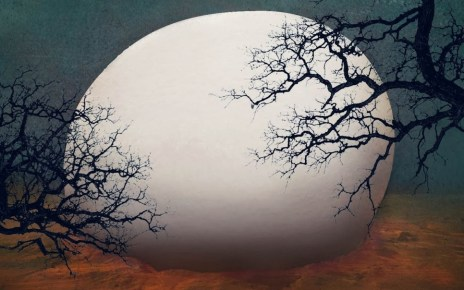 anticipation - Les dames blanches, le roman d'anticipation de Pierre Bordage dames blanches bordage couv