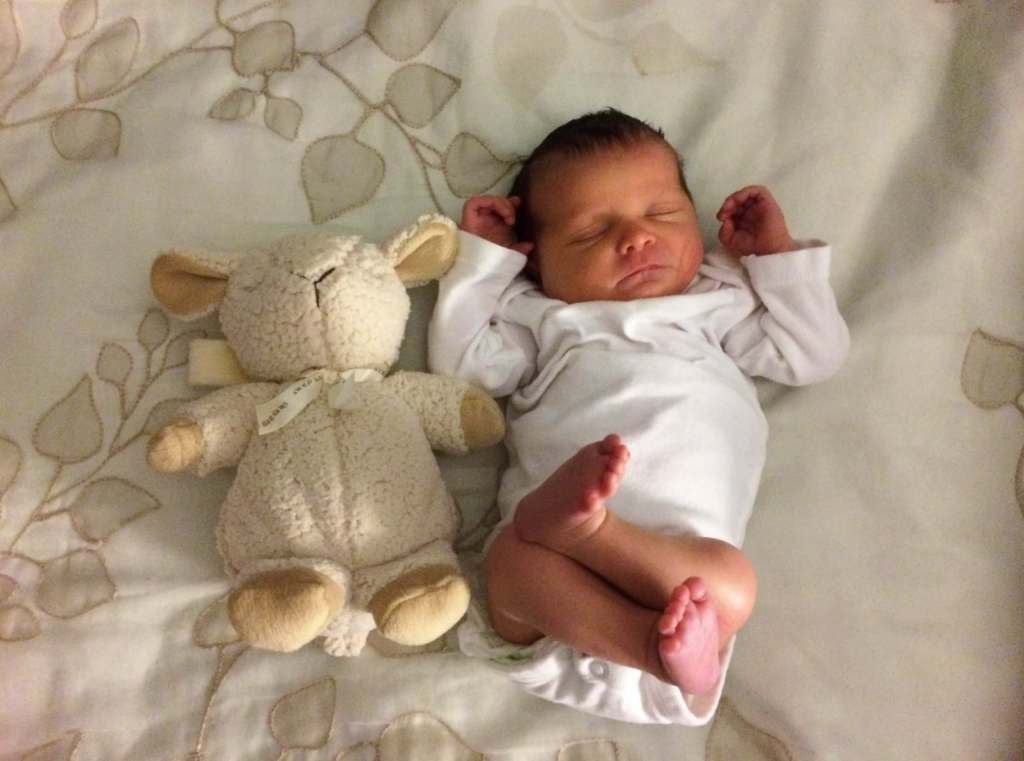 picture of four day old baby with stuffed animal toy
