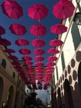 Shopping under umbrellas
