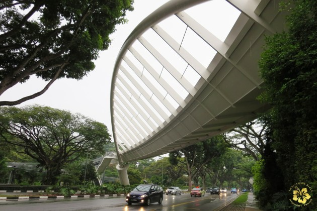 32 Singapore Southern Ridges Trail