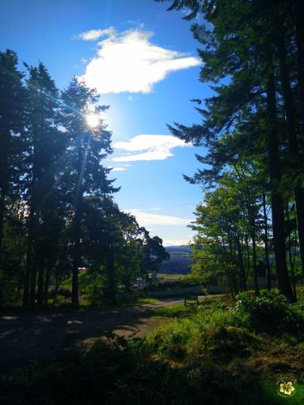 Inverness_Highland Tour_Craig Phadrig