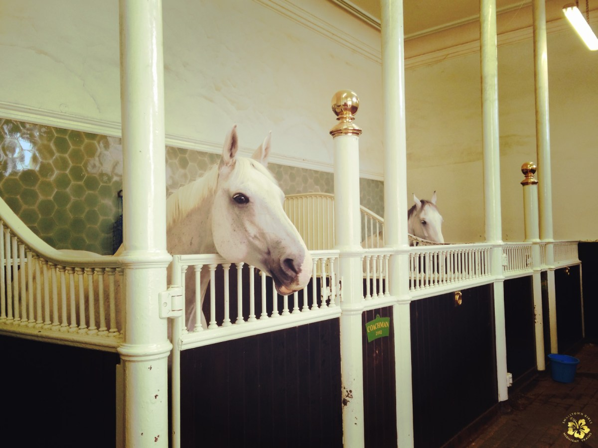 London Pass_Royal Mews_Coachman and Tyrone