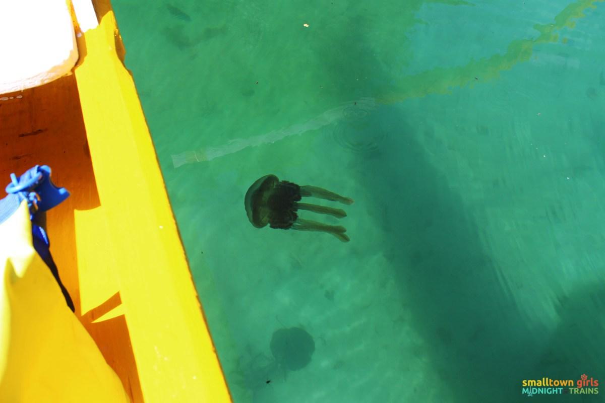 SGMT_Philippines_Siargao_Sohoton_Jellyfish Lagoon_Shadow