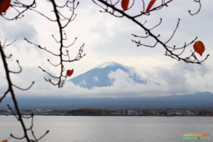 SGMT Japan Lake Kawaguchi Momiji Kairo 13 Mount Fuji framed by leaves