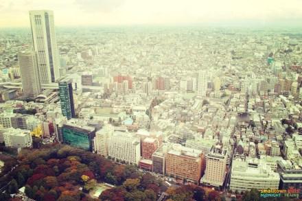 SGMT Japan Tokyo Skyline 01
