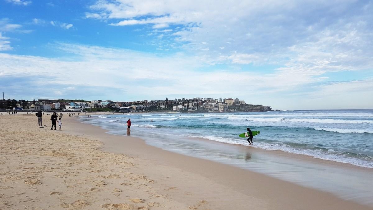 SGMT Australia Sydney_Bondi to Coogee Coastal Walk_33 Bondi Beach Surfer