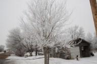 Heavy Frost