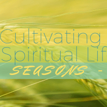 Cultivating a Spiritual Life: Seasons