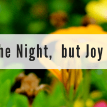 Weeping May Tarry for the Night,  but Joy Comes With the Morning