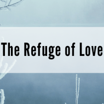 The Refuge of Love