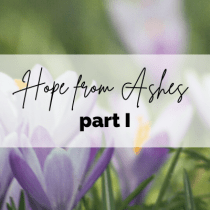 Hope from Ashes Part I