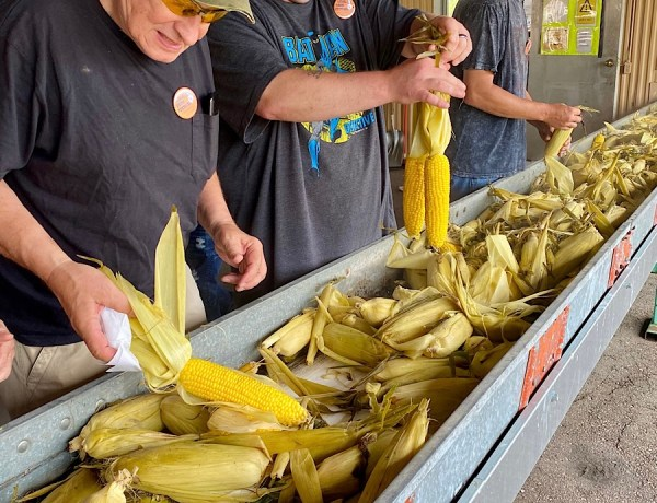 Celebrating A Popular Corn Festival In A Midwest Small Town