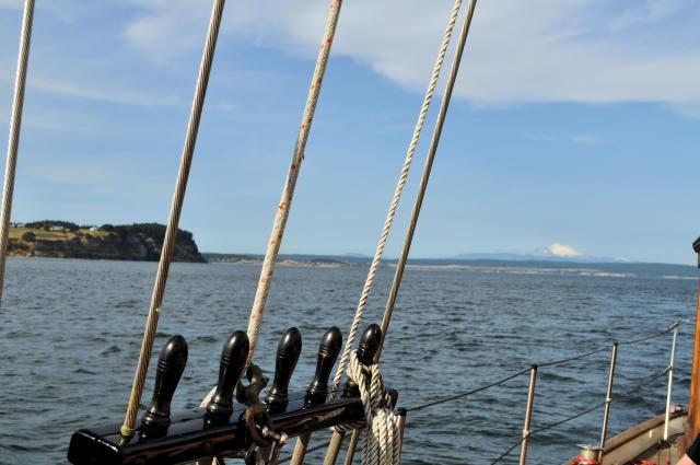 SUVA Day Sail