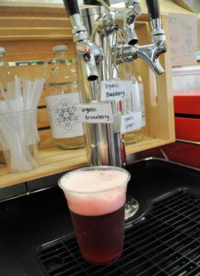 Harbor General Store Kombucha on Tap