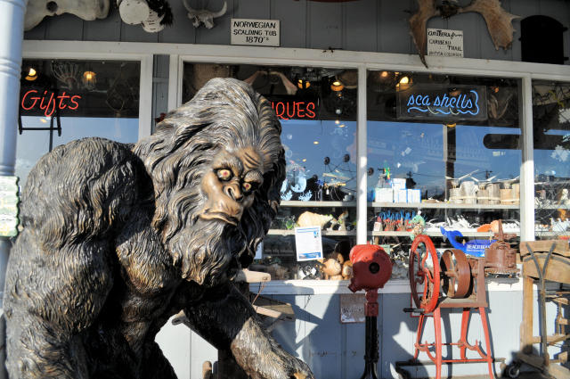 Sasquatch at Marsh's Free Museum