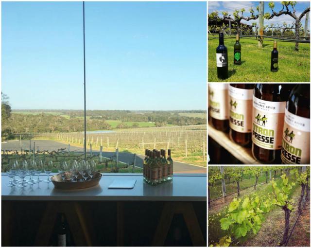 Wineries in Margaret River in Western Australia.