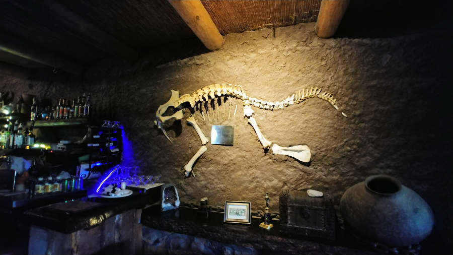 Dinosaur at La Kiva in Terlingua.
