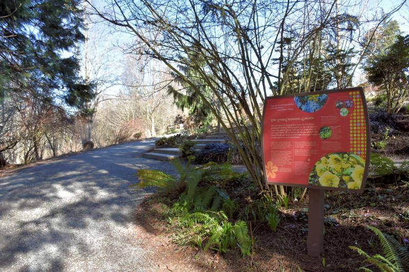 Pathway at Bellevue Botanical Gardens.